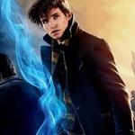 10 referências a Harry Potter descobertas em Animais Fantásticos