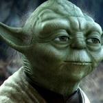 9 frases de Mestre Yoda com ensinamentos para a vida