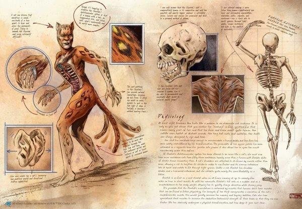 anatomia de um metahumano