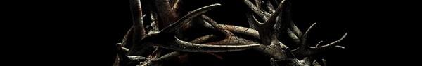 Antlers | Terror produzido por Guillermo Del Toro ganha trailer assustador!