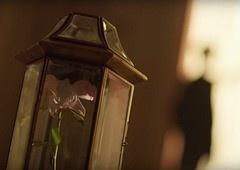 BTS: Confira a importância da flor Smeraldo no Universo Bangtan