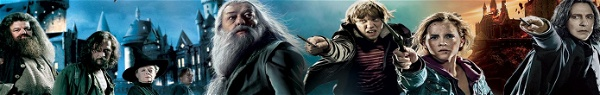 18 personagens importantes da saga Harry Potter