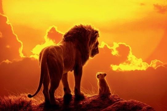 Crítica O Rei Leão | Uma homenagem à animação, mesmo com limitações