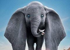 Dumbo e sua pena mágica estampa novo pôster do live-action