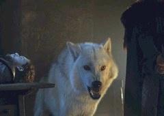 Game of Thrones | Batalha de Winterfell quase teve 'exército do lobos'!