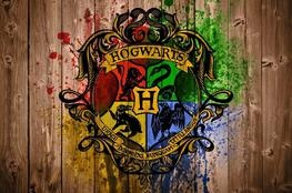 Harry Potter   As 4 CASAS DE HOGWARTS, sua história, valores e membros famosos