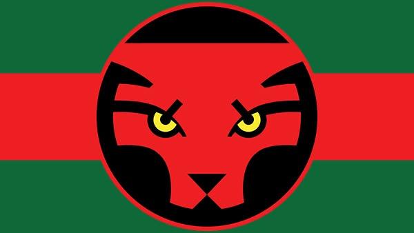 Bandeira de Wakanda