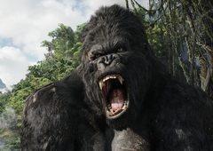 King Kong: a história sobre o gorila gigante mais icônico do cinema!