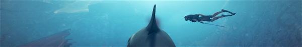 Maneater | Novo jogo de tubarão está sendo comparado a GTA!