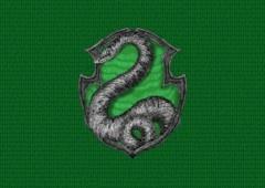 Não seja Harry Potter: 7 razões para se orgulhar de ser Sonserina