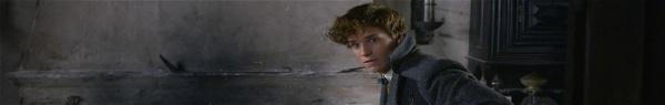 Newt pode vir ao Brasil? J.K. Rowling sugere (mais uma vez) que sim!