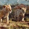 O Rei Leão | Críticas não estão lá muito boas...