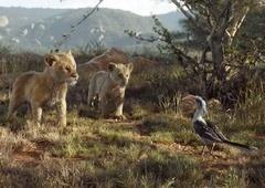 O Rei Leão | Precisamos falar sobre o Zazu no live-action!