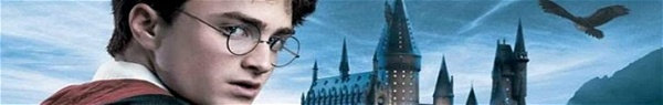Ordem cronológica dos filmes do universo de Harry Potter