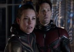 Vingadores: Ultimato | Gato de Hope van Dyne teria salvado Scott Lang!