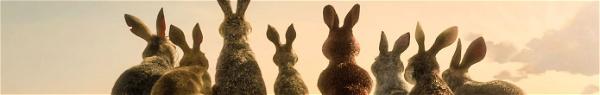 Watership Down: Adaptação da BBC e da Netflix ganha primeiro trailer!